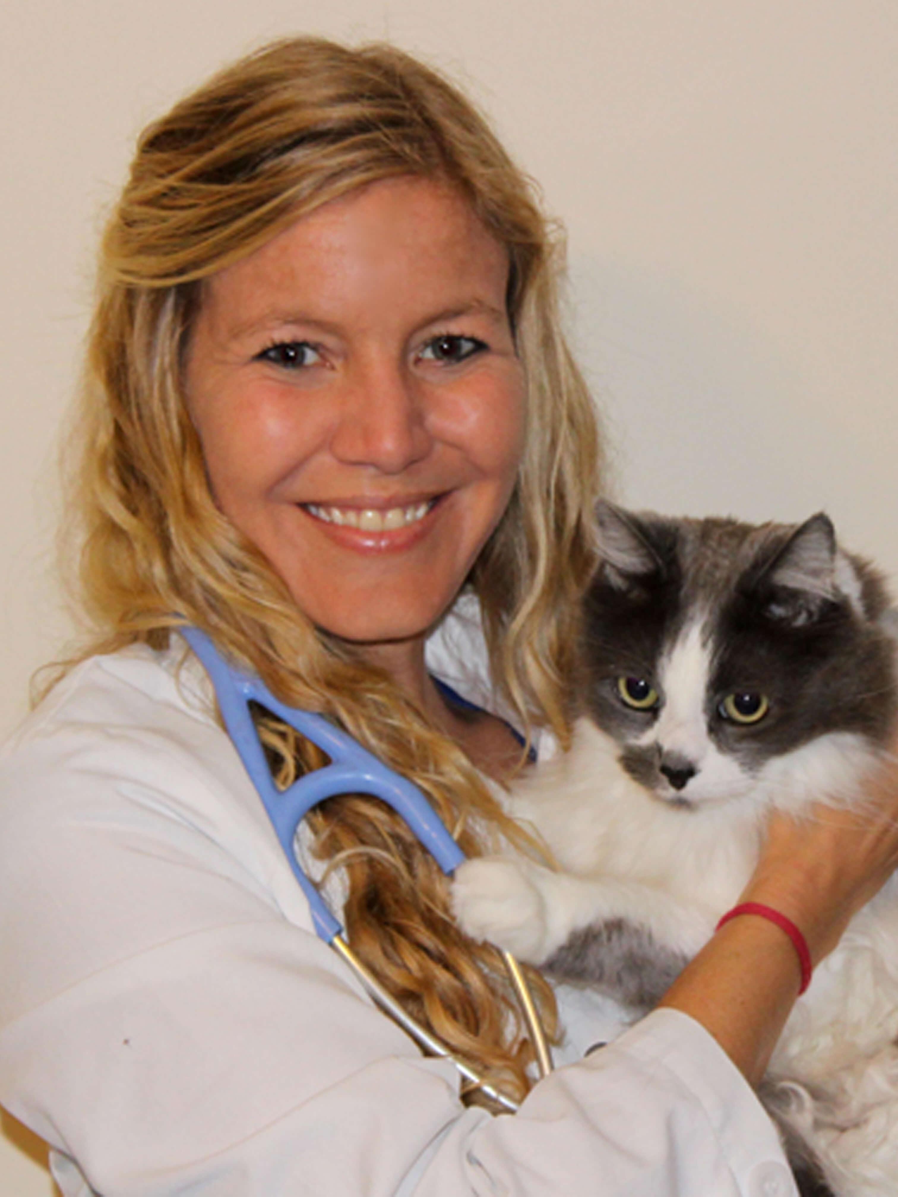 Vet North Palm Beach Meet Our Staff Northlake Animal Hospital